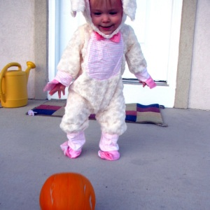 Infant Wholesale Costume Club Review
